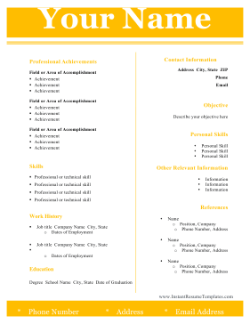 Modern Two Column Resume Template