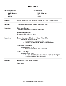 Summer Job Resume