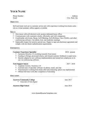 Work From Home Experience Resume
