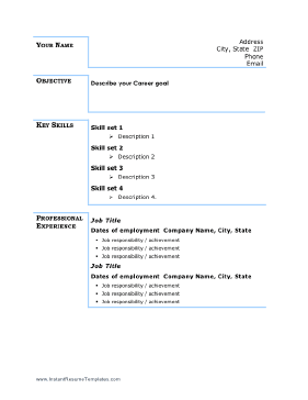 Basic Business Resume - Blue