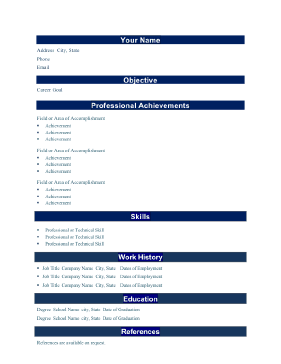 Professional Resume - Bold (A4)